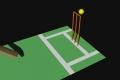 cricket-graphic-full